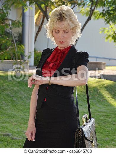 Business Woman - csp6645708