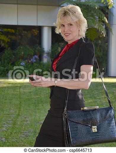 Business Woman - csp6645713