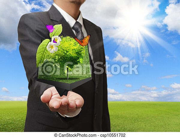 Businessman holding a creative box of tree in his hand with green meadow on the background - csp10551702