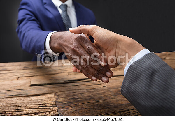 Businessman Shaking Hand With His Partner - csp54457082