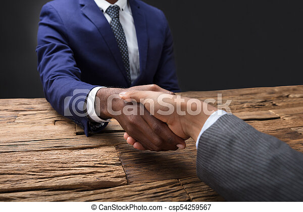 Businessman Shaking Hand With His Partner - csp54259567