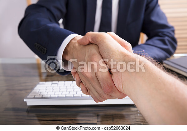 Businessman Shaking Hand With His Partner - csp52663024