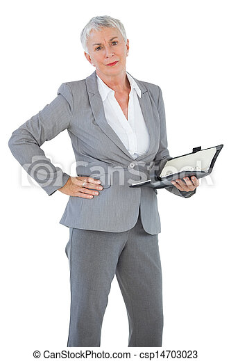 Businesswoman holding diary with her hand on hip - csp14703023
