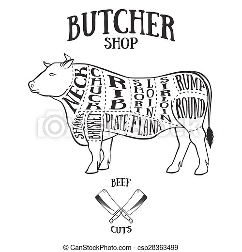 Cow Meat Cut Diagram