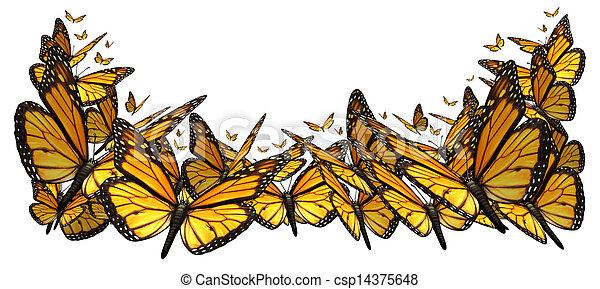 Buttefly Border - csp14375648