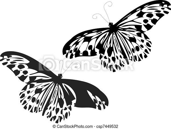Butterflies - csp7449532