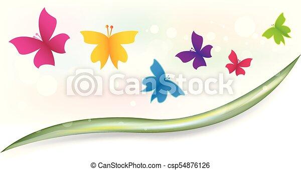 Butterflies in the garden - csp54876126