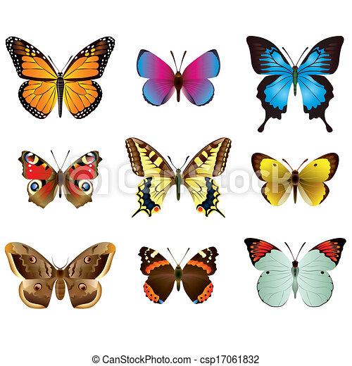 Butterflies Photo Realistic Vector Set Vector Collection