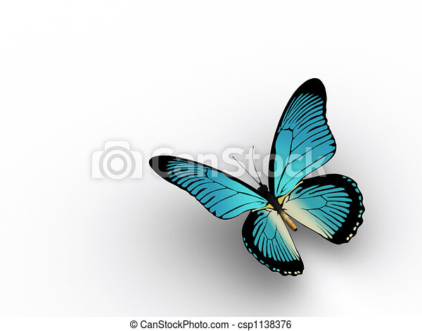 Butterfly 3 - csp1138376
