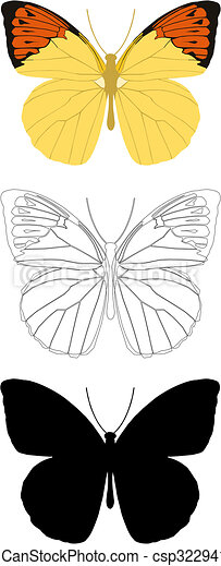 butterfly - csp3229416