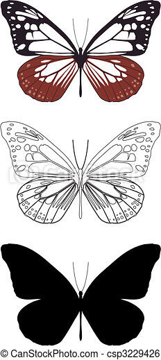 butterfly - csp3229426