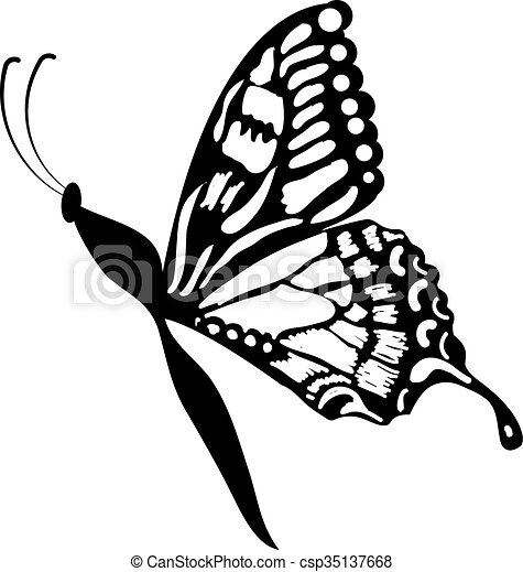 butterfly clipart clip art vector search drawings and graphics rh canstockphoto com butterfly images clip art black and white butterfly images clipart black and white