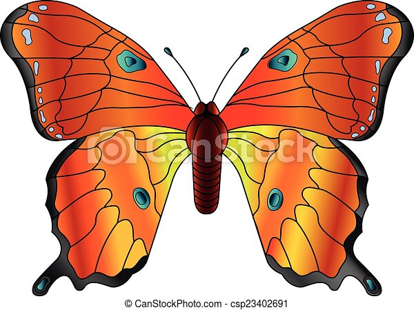 Butterfly - csp23402691