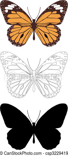 butterfly - csp3229419