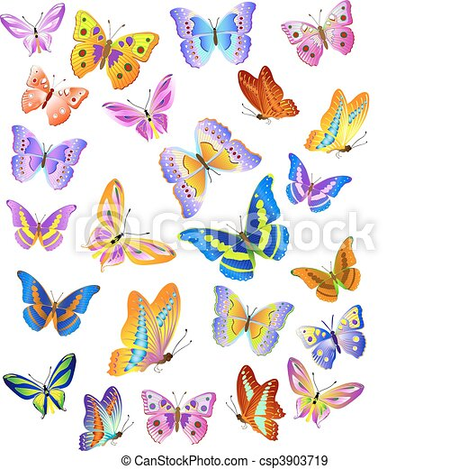Butterfly - csp3903719