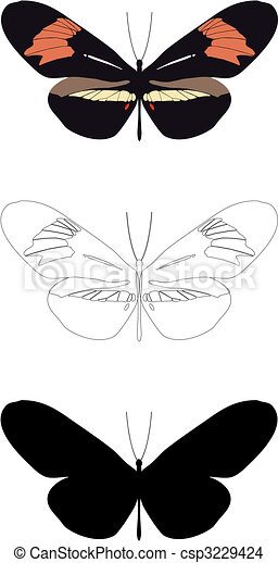 butterfly - csp3229424