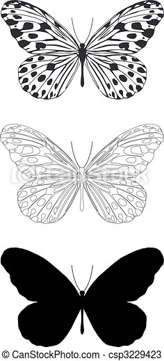 butterfly - csp3229423