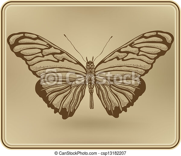 Butterfly framed, hand-drawing. Vector illustration. - csp13182207