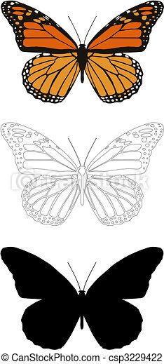 butterfly - csp3229422