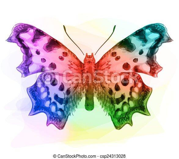 Butterfly. Iridescen colours.  - csp24313028