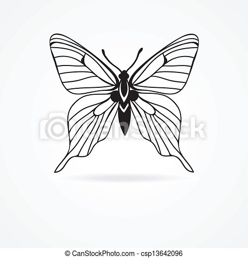 butterfly isolated on white background - csp13642096