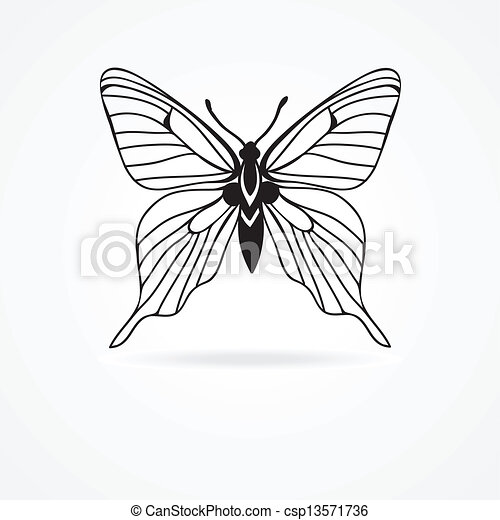 butterfly isolated on white background - csp13571736