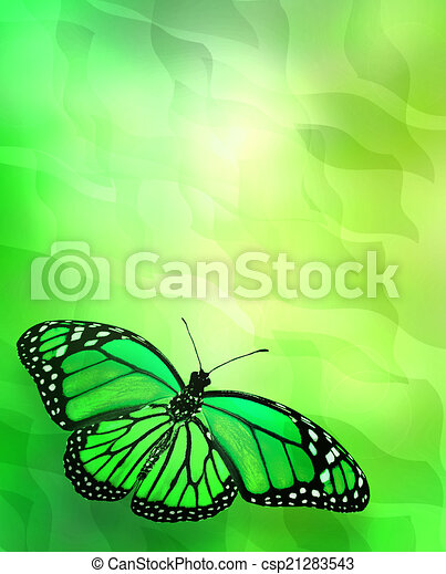 Butterfly on abstract lights background - csp21283543