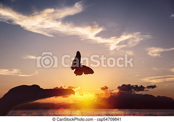 Butterfly takes flight from a human hand - csp54709841