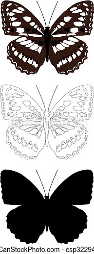 butterfly - csp3229420