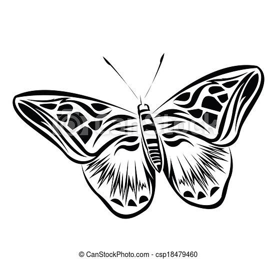 Butterfly Vector Illustration - csp18479460