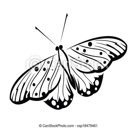 Butterfly Vector Illustration - csp18479461
