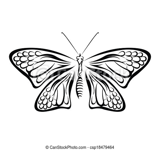 Butterfly Vector Illustration - csp18479464