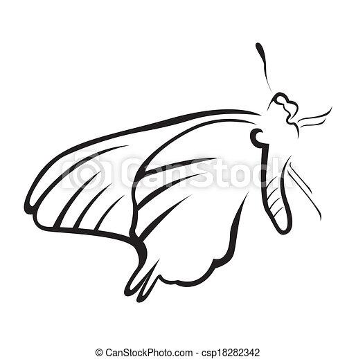 Butterfly Vector Illustration - csp18282342
