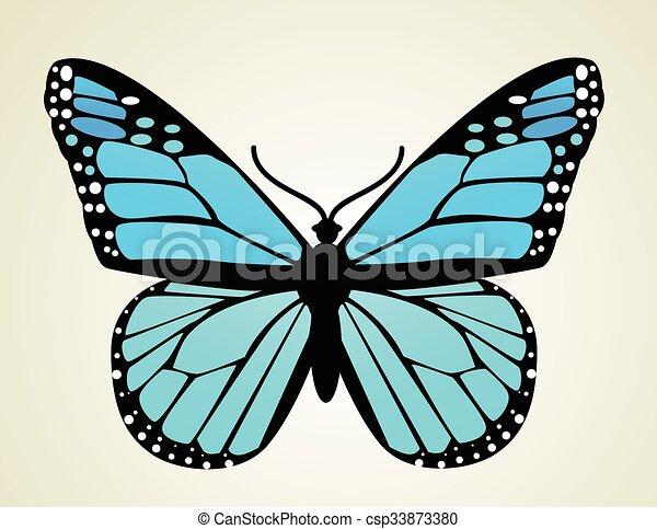 Butterfly. Vector illustration  - csp33873380