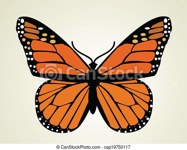Butterfly. Vector illustration  - csp19750117