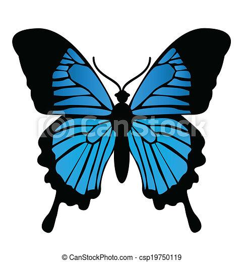 Butterfly. Vector illustration  - csp19750119