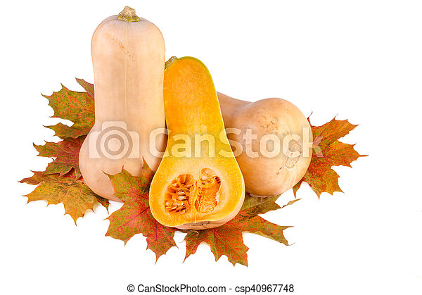 Butternut pumpkins with fall leaves isolated on white - csp40967748