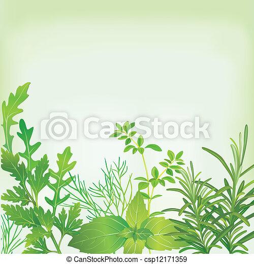 byliny, konstrukce, čerstvý - csp12171359