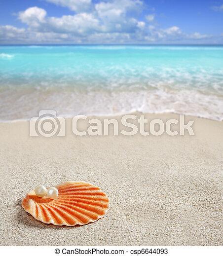 Perla caribeña en playa tropical de arena blanca - csp6644093