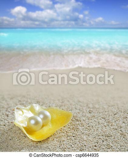 Perla caribeña en playa tropical de arena blanca - csp6644935