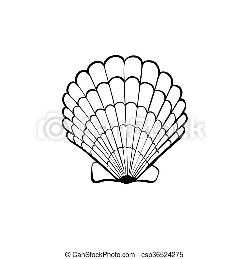 icono de concha marina - csp36524275