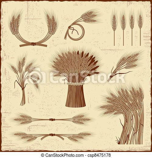 céréale, retro, collection - csp8475178