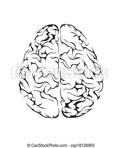 cérebro, símbolo, vetorial, ilustração - csp18126903