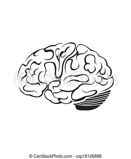 cérebro, símbolo, vetorial, ilustração - csp18126898