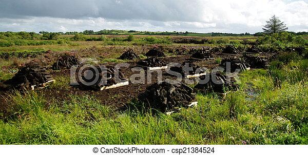 Montones de turba en el pantano irlandés - csp21384524