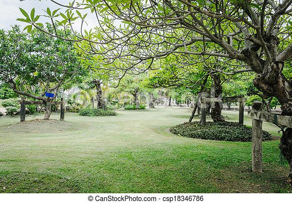 Awesome Césped, Paisaje, Jardín, Recientemente, Cortado   Csp18346786