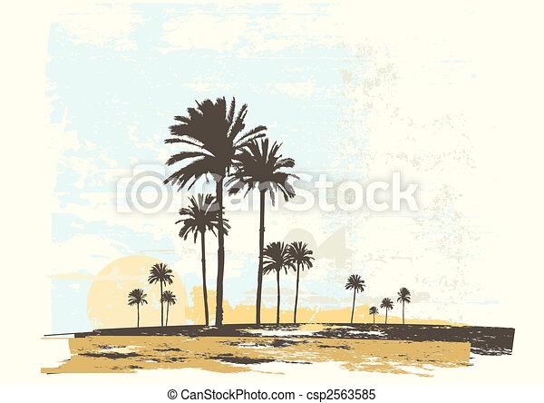 côte, océan - csp2563585