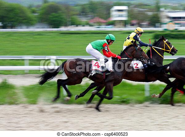 caballo, racing. - csp6400523