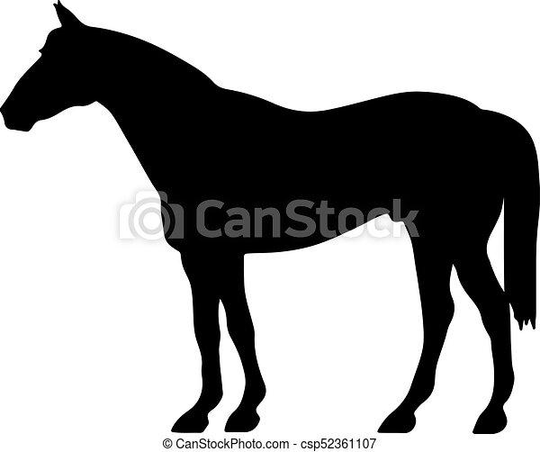 Aumentando la silueta de vector fino de caballo y el esbozo... elegantes sementales negros - csp52361107