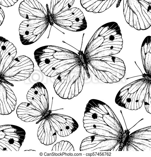 Cabbage butterfly pattern - csp57456762